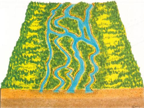 braidedstream1